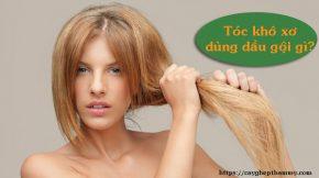 tóc khô xơ dùng dầu gội gì