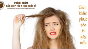 cách khắc phục tóc bị gãy nếp